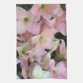 Flores de Kalanchoe Toallas De Cocina