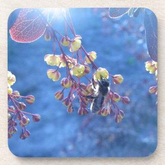 Flores de la abeja y del Berberis Posavasos De Bebida