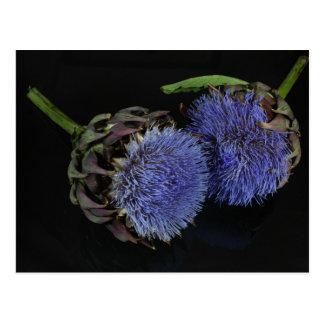 Flores de la alcachofa postal