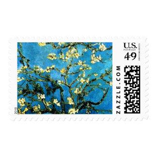 Flores de la almendra de Van Gogh Sellos Postales