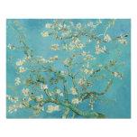 Flores de la almendra de Vincent van Gogh Fotografía