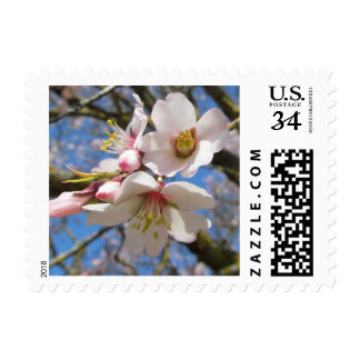 Flores de la almendra sellos postales