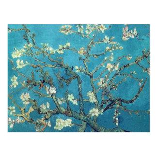 Flores de la almendra postal