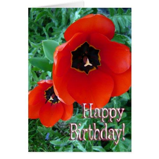 ¡Flores de la amapola - feliz cumpleaños! Tarjeta De Felicitación