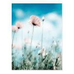 Flores de la amapola postal