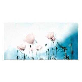 Flores de la amapola tarjetas fotográficas personalizadas