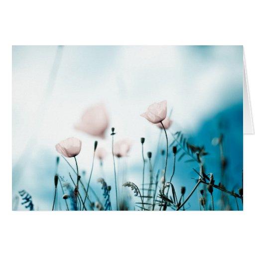 Flores de la amapola tarjeton