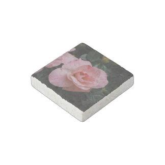 Flores de la azalea imán de piedra