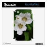 Flores de la baya calcomanías para iPhone 3G