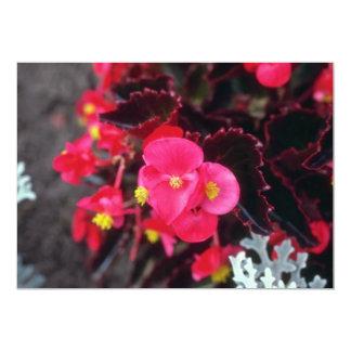 Flores de la begonia de cera (begonia) invitaciones personalizada