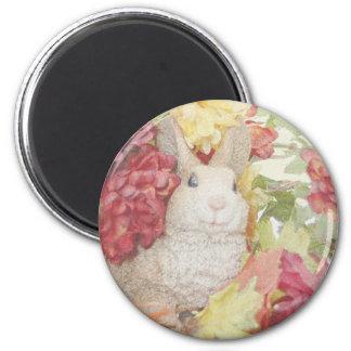 Flores de la caída del conejo imán redondo 5 cm