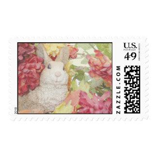 Flores de la caída del conejo sellos