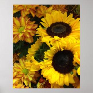 Flores de la caída del girasol poster