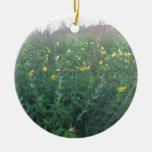 Flores de la caída en un prado adorno