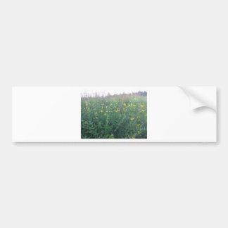 Flores de la caída en un prado pegatina para auto