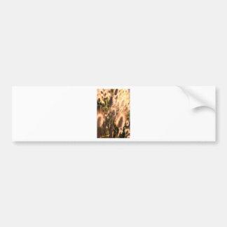 Flores de la cola del algodón del oro etiqueta de parachoque
