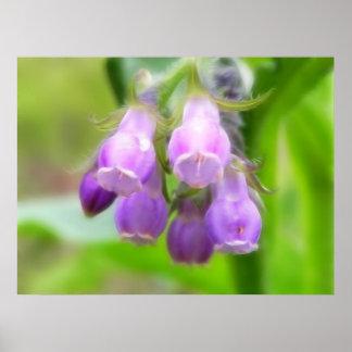 Flores de la consuelda póster