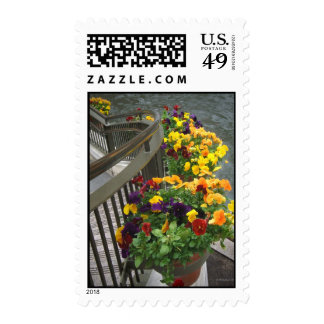 Flores de la escalera sellos