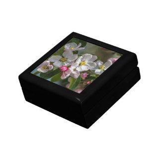 Flores de la flor de cerezo caja de joyas
