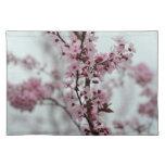 Flores de la flor de cerezo de la primavera manteles individuales