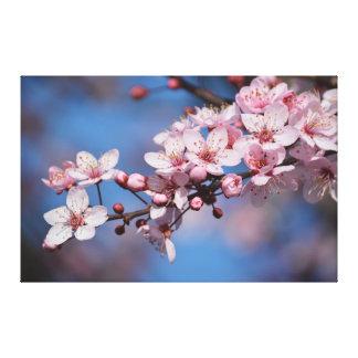 Flores de la flor de cerezo impresión en lienzo