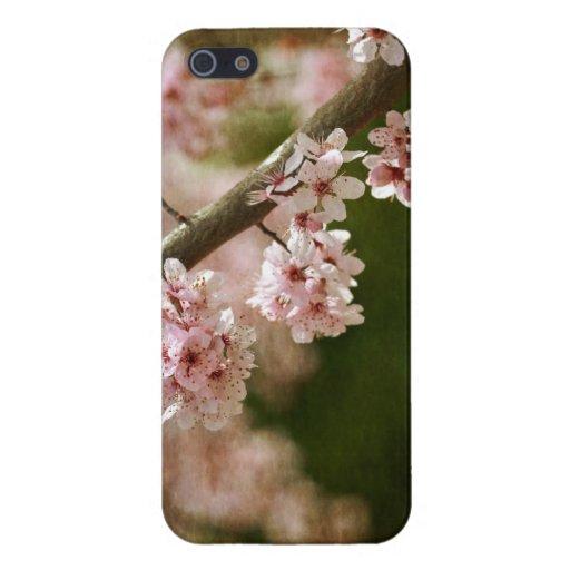 Flores de la flor de cerezo iPhone 5 carcasa