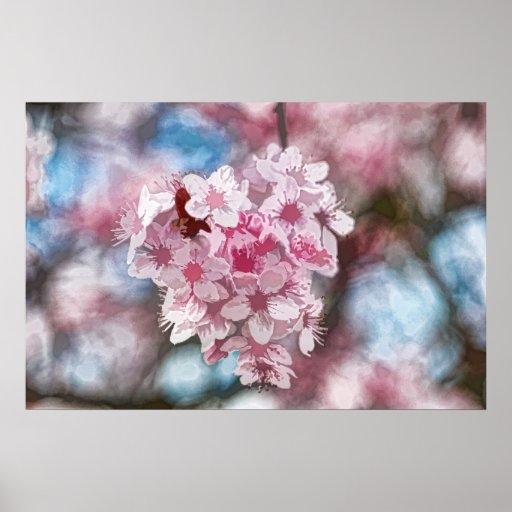 Flores de la flor de cerezo poster