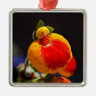 Flores de la flor del monedero de una señora adorno navideño cuadrado de metal