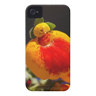 Flores de la flor del monedero de una señora Case-Mate iPhone 4 funda