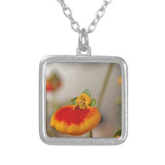 Flores de la flor del monedero de una señora colgante cuadrado
