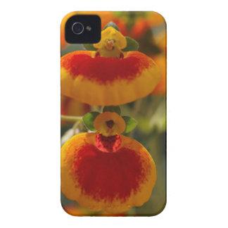 Flores de la flor del monedero de una señora funda para iPhone 4 de Case-Mate
