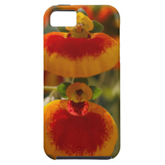 Flores de la flor del monedero de una señora funda para iPhone SE/5/5s