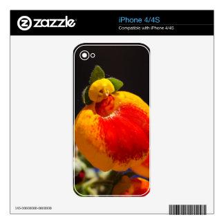 Flores de la flor del monedero de una señora iPhone 4S skin