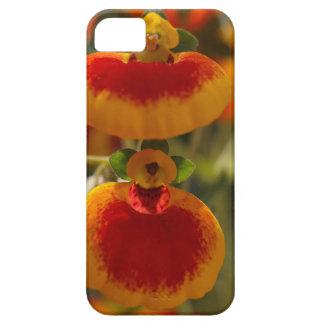 Flores de la flor del monedero de una señora iPhone 5 funda