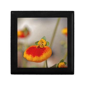 Flores de la flor del monedero de una señora joyero cuadrado pequeño