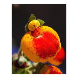Flores de la flor del monedero de una señora membrete a diseño