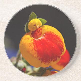 Flores de la flor del monedero de una señora posavasos cerveza
