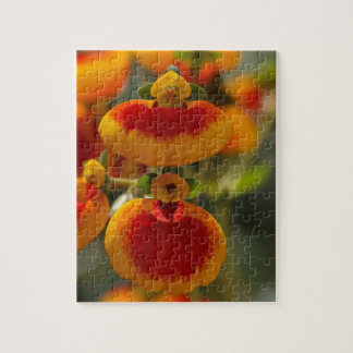 Flores de la flor del monedero de una señora puzzle con fotos