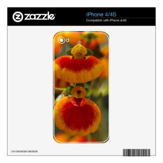 Flores de la flor del monedero de una señora skins para eliPhone 4S