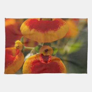 Flores de la flor del monedero de una señora toallas de cocina