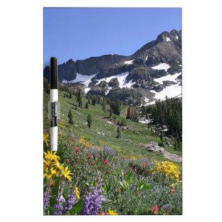 Flores de la floración de la primavera de la monta pizarras blancas