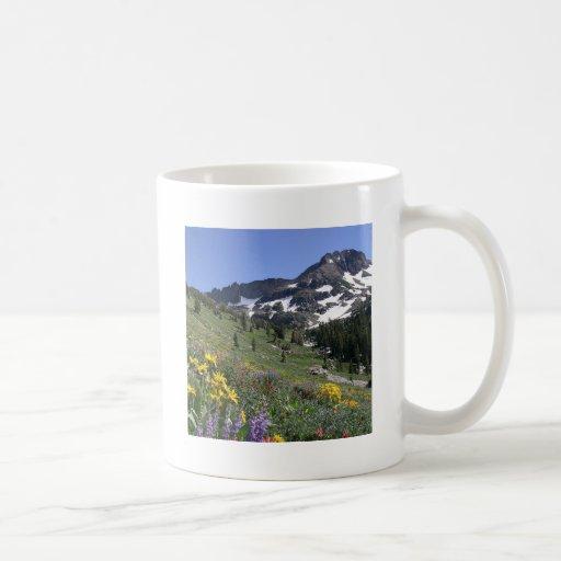 Flores de la floración de la primavera de la monta tazas de café