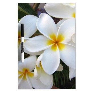 Flores de la floración tablero blanco