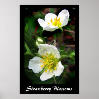 Flores de la fresa poster
