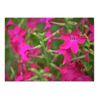 Flores de la fuente invitación 12,7 x 17,8 cm