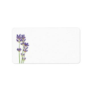 Flores de la lavanda aisladas en el fondo blanco etiqueta de dirección