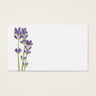 Flores de la lavanda aisladas en el fondo blanco tarjeta de negocios