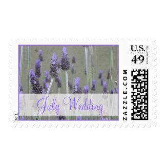 Flores de la lavanda del boda de julio sello