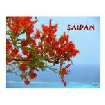 Flores de la llama de Saipán en un océano del azul Tarjetas Postales