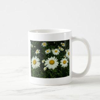 flores de la margarita blanca taza básica blanca